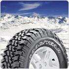 Aggressive traction on wet or snowy terrain